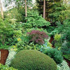 shade garden layout stunning shade garden design ideas
