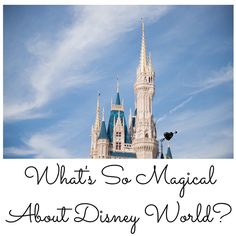 My husband is super cool and talking about what makes Disney World so magical!