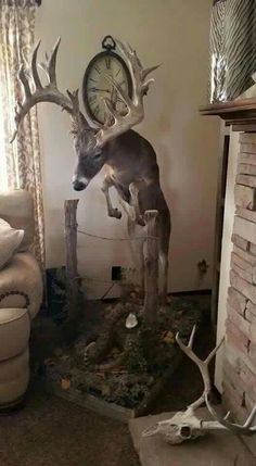 Post a random pic Thread - Page 12753 - Yellow Bullet Forums Deer Hunting Decor, Deer Head Decor, Whitetail Hunting, Hunting Stuff, Hunting Bedroom, Hunting Humor, Hunting Art, Hunting Cabin, Hunting Guns