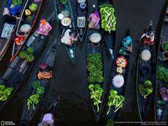 Лучшие снимки года по версии журнала National Geographic | Серебряный Дождь