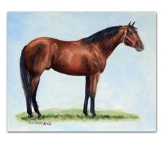 Famous Quarterhorses | POCO BUENO - FAMOUS QUARTER HORSE ORIGINAL OIL PAINTING western equine ...