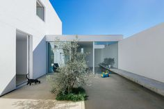 House in Preguiçosas by Branco-Del Rio Arquitectos located in Coimbra, Portugal. The house is located on the outskirts of Coimbra, an area of single-family… Contemporary Architecture, Interior Architecture, Porches, Coimbra Portugal, Pleasant View, Interior Minimalista, Patio Interior, Exterior, Architect House