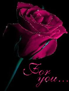 The perfect Flower Rose ForYou Animated GIF for your conversation. Discover and Share the best GIFs on Tenor. Purple Flowers Wallpaper, Beautiful Flowers Wallpapers, Beautiful Rose Flowers, Purple Roses, Flower Wallpaper, Amazing Flowers, Love Flowers, Roses Gif, Flowers Gif