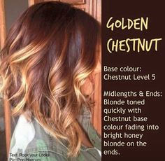 Hair style - Golden Chestnut :: blonde toned quickly with chestnut base colour fading into bright honey blonde on the ends Medium Hair Cuts, Medium Hair Styles, Curly Hair Styles, Chestnut Hair, Brown Blonde Hair, Blonde Honey, Blonde High, Honey Hair, Wavy Hair
