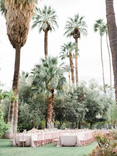 Dreamy Palm Springs
