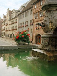 Rothenburg Fountain- Rothenburg(Bavaria), Germany