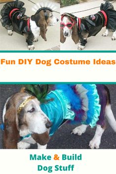 Find a collection of fun DIY dog costume ideas for your furry friend. Great for costume competitions or halloween. #DIYdog #Dog #DogFun #DogIdeas #DogStyle #DogCostumeIdeas #DogHalloween