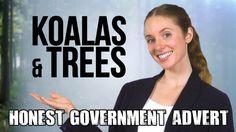 """Just in case you missed it... Honest Aussie Government Ad: """"Koalas & Trees"""" 🐨&🌳  #watchaddict #watchporn #wristgame #watchnerd #watchgeek #watchfam #horology #wotd #womw #wristwatch #wristcandy #wristwatches #watchmania #watchmen #watchlover #watchdaily #watchcollector #watchfreak #watchshop #dws #watchesofinstagram #watchesofig #instawatch #watches #timepieces"""