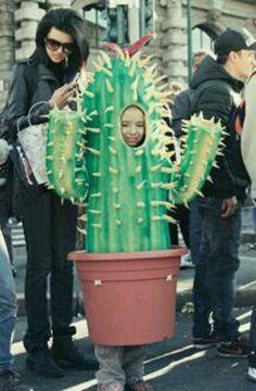BERNINA Halloween 2011 - Cactus! | Cacti, Halloween costumes and ...