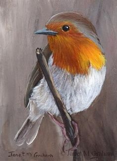 """Daily Paintworks - """"Robin no 2 ACEO"""" - Original Fine Art for Sale - © Janet…"""