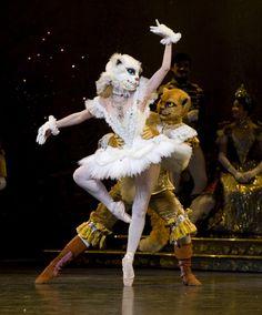Cupcakes & Conversation with Aria Alekzander, Corps de Ballet, Houston Ballet www.theworlddances.com #costumes #ballet
