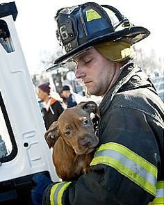 NYC firefighter rescuing puppy from burning building  |  Shared by LION