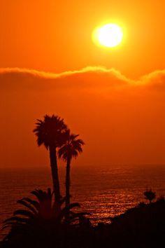 ✯ LA Hot Sunset