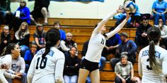 Beavers Give Bucks a Test Early, Rosco Still Prevails in Three Sets - http://tribunejuice.com/2014/10/beavers-give-bucks-a-test-early-rosco-still-prevails-in-three-sets/