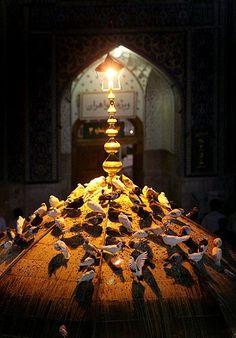 Islamic Images, Islamic Pictures, Imam Reza, Imam Hussain Karbala, Ibn Ali, Imam Hussain Wallpapers, Karbala Photography, Love In Islam, Shia Islam