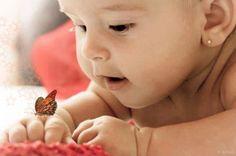 baby butterfly love   nany araujo