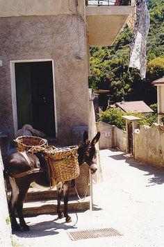 Papasidero (Cosenza) Calabria, Italy