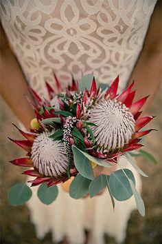 Proteas, Silver Dollar Eucalyptus, and Pink Veronica bridal bouquet Protea Wedding, Floral Wedding, Fall Wedding, Wedding Ideas, Bouquet Wedding, Diy Wedding, Wedding Stuff, Dream Wedding, Wedding Dresses