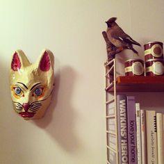 HAY cat mask