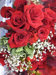 Beautiful Rose Flowers, Beautiful Flowers, Good Morning Wishes Friends, Rose Flower Wallpaper, All Birds, Flower Quotes, Flower Decorations, Flower Art, Red Roses