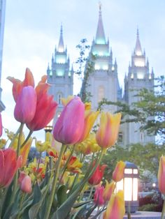 Salt Lake City in the Spring time. Flowers on every street and hanging from the gas lamp lights. One of America's most beautiful cities.