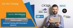 Apextg India Pvt Ltd - IT Training & Development Company Noida provides Best Dot Net Training in Noida, Dot Net Internship in Noida and Dot Net Industrial Training in Noida for BCA/MCA/B.Tech/M.Tech/IT students.  Training session will be delivered by industry experts with live project exposure. We, at Apextgi have well-settled lab facilities and experienced trainers (having years of experience in the industry). After Completion of Training, We will provide 100% placement assistance.