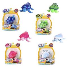 Image for Little Live Pets Lil' Turtle - Assorted from Kmart