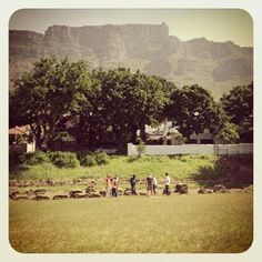 From Bowling Green to Bowl of Greens, Madame Zingara sponsors funding to help lift the Urban City Farming project off the ground, 2013.