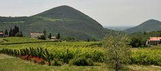 Prosecco Spring - Eventi - Promozione turistica del Veneto