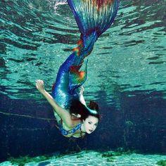 The beautiful Mermaid Taven from Merbella studios with one of her fabulous tails! Real Life Mermaids, Mermaids And Mermen, Mermaid Pose, Mermaid Tails, I Love Swimming, Crochet Mermaid, Mermaid Princess, Merfolk, Under The Sea