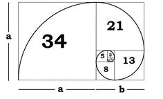 In the golden ratio, <em>a   b</em> is to <em>a</em> as <em>a</em> is to <em>b</em>.<br />