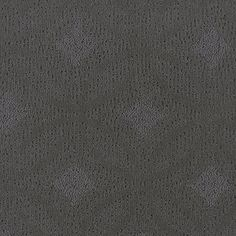 Color: 00500 Heirloom Silver Q2133 Adaptation - Shaw Anso Nylon Carpet  Georgia Carpet Industries