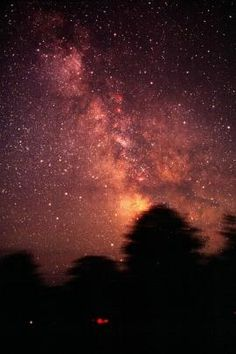 Astronomy and Stargazing at Gordon's Park Mantioulin Island, Ontario. Darkest skies in Ontario. The Places Youll Go, Places To See, Manitoulin Island, Days Of Creation, Gordon Parks, Lake Huron, Light Pollution, Dark Skies, Countries Of The World