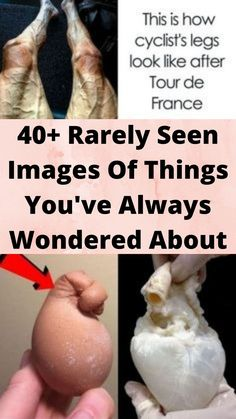 40+ #Rarely Seen Images Of #Things You've Always #Wondered About Bridal Nails, Bridal Makeup, Wtf Funny, Funny Memes, Funky Nail Art, Romantic Wedding Receptions, Tattoo Fails, Beach Poses, Discovery Channel