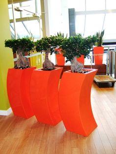 3 Curvy Marilyns in Dutch Orange
