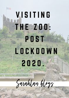 In this lifestyle post I'm sharing my thoughts and experience when visiting the zoo for the first time since lockdown began to ease.. First Time, Thoughts, Lifestyle, Ideas