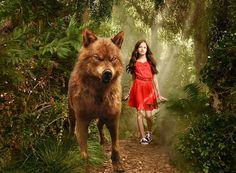 The Twilight Saga Twilight Jacob And Renesmee, Jacob Black Twilight, Twilight Saga Quotes, Vampire Twilight, Twilight Saga Series, Twilight Edward, Twilight Cast, Twilight Movie, Twilight Wolf Pack