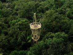 Rainforest Observation Tower, Panama.  designed to observe the tropical rainforest and its colourful wildlife (especially birds), is located around 30 kilometres from the centre of Panama City and just two kilometres from the town of Gamboa. The tower, built in a tapering framework of steel tubes, is 32 metres tall, high enough to reach the forest canopy.