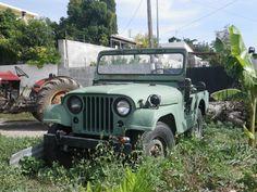Jeep Willys CJ 5 années 1960 (Crête 2015)