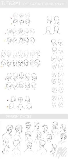 Drawing reference face angles deviantart ideas for 2019 Male Face Drawing, Drawing Poses Male, Face Drawing Reference, Drawing Cartoon Faces, Drawing Heads, Face Sketch, Art Reference, Face Structure Drawing, Anime Male Face