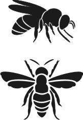 Bee Stencils - this place has a great budget range Bee Stencil, Stencil Art, Painting Stencils, Stencil Patterns, Stencil Designs, Stencil Templates, Arte Linear, Doodle Drawing, Silhouette Projects