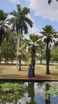 Jardim Botânico Nacional de Cuba, Havana © Viaje Comigo Fidel Castro, Cuba, Tropical, Havana, Tropical Plants, Japan Garden, Nature, Green Environment, Forests