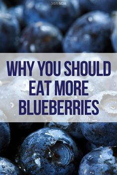 Read this article to find out all of the health benefits of blueberries and why you should be eating more of them!