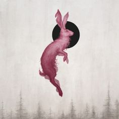 Miranda Meeks studied illustration at Brigham Young University. She is currently located in Utah where she works as an Illustrator and Designer creating both traditional and digital art. Rabbit Illustration, Illustration Art, Rabbit Tattoos, Concept Art World, Rabbit Art, Rabbit Head, Spirited Art, Bunny Art, Art Inspo