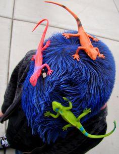 Crazy hair day idea for boys..... Spray on color, lizards hot glued to hair clips. Adorable!!!!