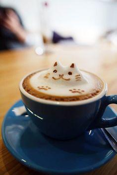 Cat + Cappuccino = Cattuccino? Instant cappuccino mixes online http://www.caffedvita.com/catalog/index.php