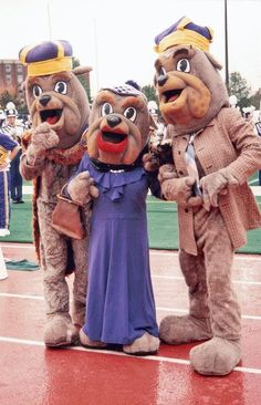 Can they bring these back? Duke Dog's parents for parents weekend? This is the cutest thing ever! <3 JMU Duuuukes!