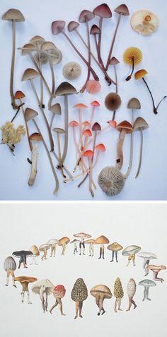 making the world-go-round  - mushrooms  [someone else's cute caption]