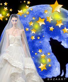 Lua e estrelas - Lelia Maria Fachel Sarda