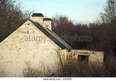 An unused cottage in Wilkinstown, Navan. Photo:www.barrycronin.com - Stock Image
